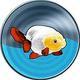 Goldfishjunkie